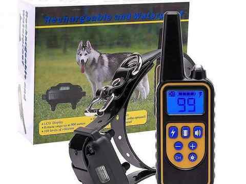 Ошейник для дрессировки собак, электрический