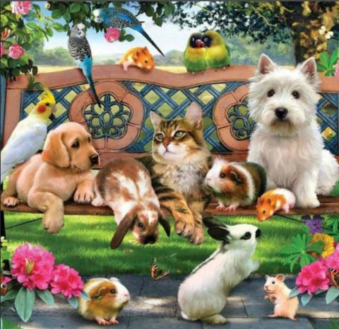 Раскраска по номерам 40х50 встреча домашних животных (арт. GX1944)