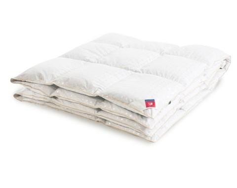 Одеяло пуховое зимнее Афродита 172х205