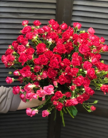 Букет из 19 кустовых роз 60 см #16789