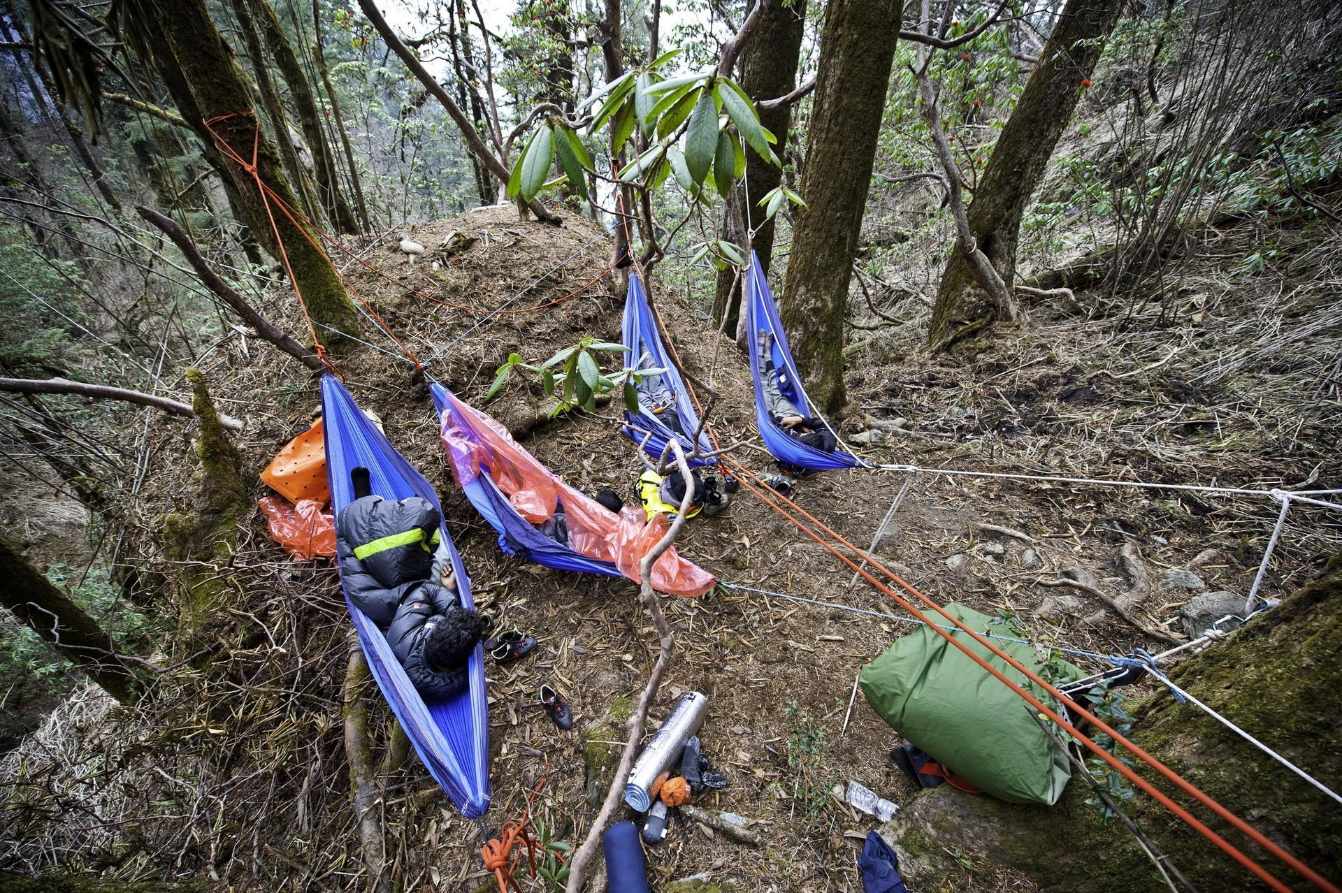 Лагерь гамаков в лесу с высоты птичьего полета.