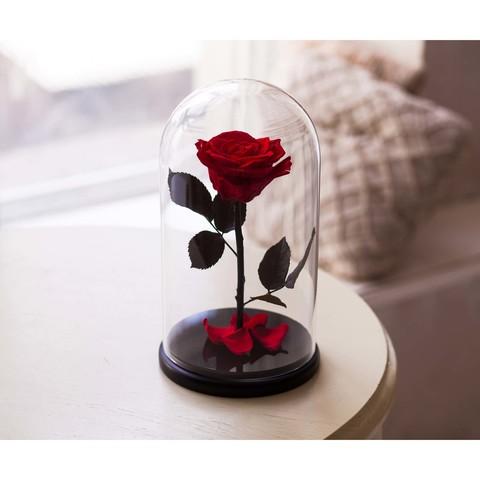 Роза в колбе красная (размер S, mini)