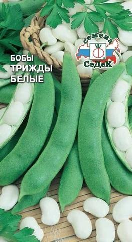 Семена Бобы Трижды белые