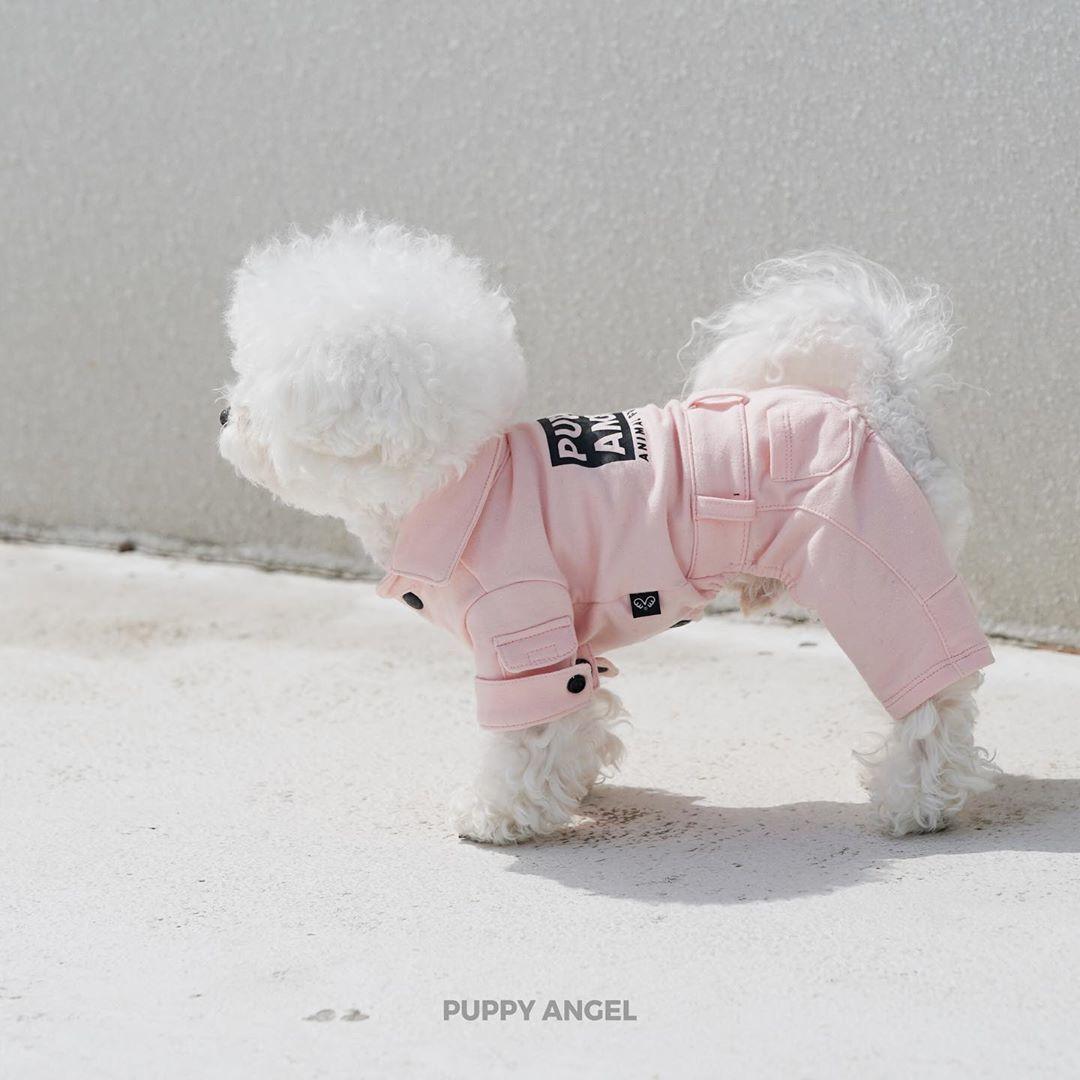 473 PA - Коcтюмы для собак
