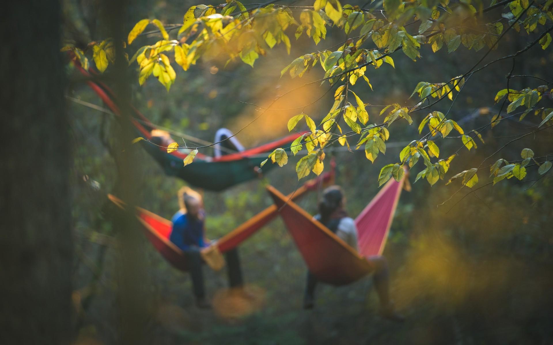 Три девушки в лагере гамаков среди деревьев.