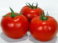 Волверин F1 семена томата детерминантного (Syngenta / Сингента)