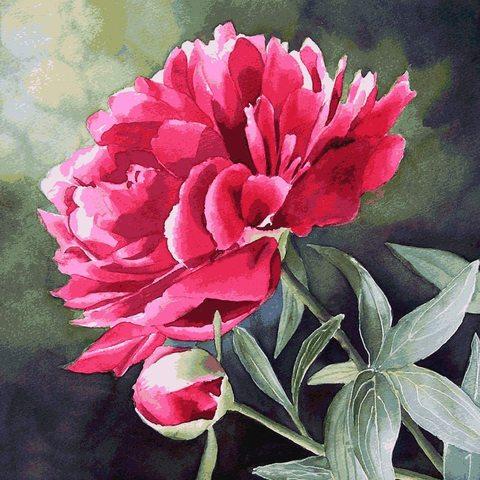 Алмазная Мозаика 20x20 Розовый цветок пиона (арт. MM1041 )