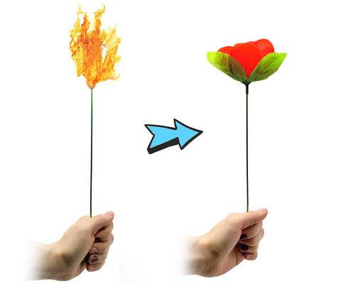 Роза из огня