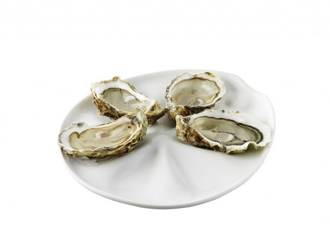 Фарфоровая тарелка для устриц, белая, артикул 643608, серия Impulse