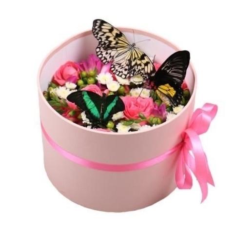 Цветы и живая бабочка в шляпной коробке #1051