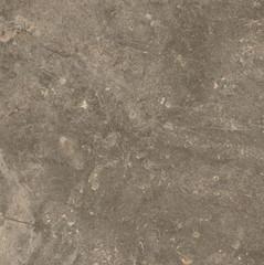 Керамогранит Червиния земля 450х450