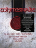 Whitesnake / Slip Of The Tongue (30th Anniversary)(Super Deluxe Edition)(6CD+DVD)
