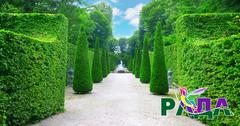 "Фотосетка ""Рада"" для декора забора ""Зеленая Аллея""  158х250 см."