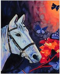 Картина раскраска по номерам 40x50 Белый конь и бабочки