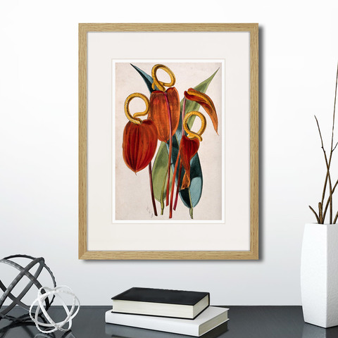 Генри Чарльз Эндрюс - Exotic plants of the world №15, 1815г.