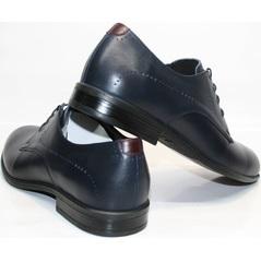 Туфли под синий мужской костюм Икос 3360-4.