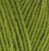 Пряжа Alize Lanagold 485 зеленый