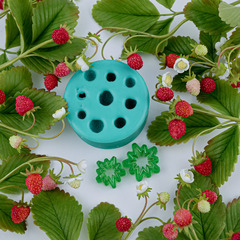 Молд земляника + чашелистики и цветочек