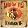Lynyrd Skynyrd / Live At Knebworth '76 (Limited Edition)(2LP+DVD)
