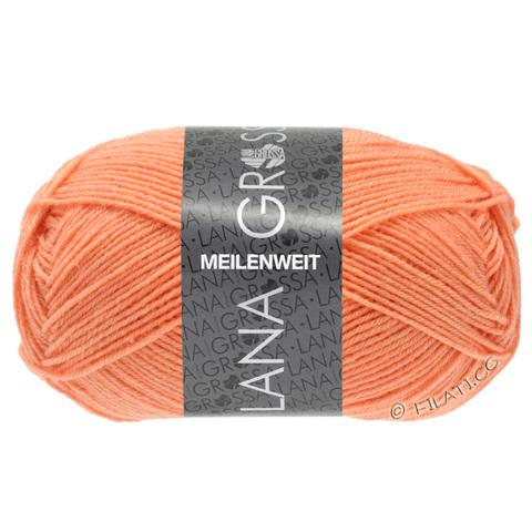 Lana Grossa Meilenweit Uni 50 (1387) купить