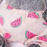 Кот Басик Baby в трусах в арбузик и с зеленым бантиком