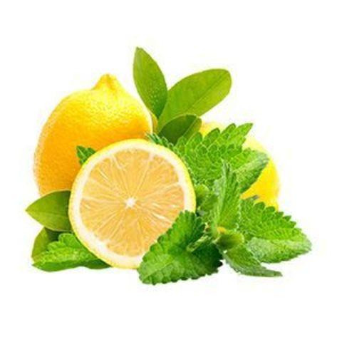 Vega Лимон с Мятой