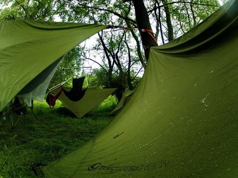 Тент над гамаком в лесу на поляне.