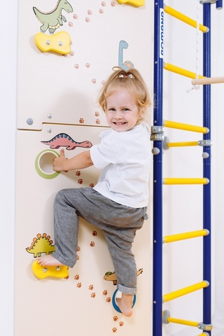 Шведская стенка ROMANA Next Skalolaz (детская)