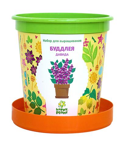 Набор для выращивания в горшочках Happy Plant Буддлея Давида