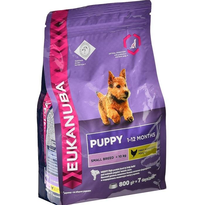 Eukanuba Корм для щенков мелких пород, Eukanuba Dog SMALL PUPPY 10137692.jpg