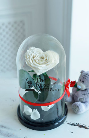 Роза Premium ХИТ Оптом Выс*Диам*Бутон (27*15*11см)Цвет Сердце,белая
