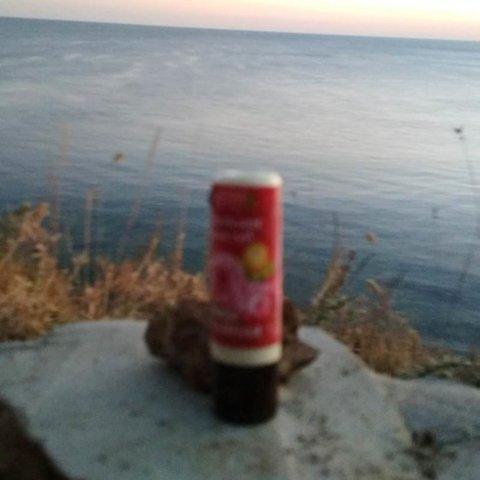 Бальзам для губ «Роза Чайная»™Флора