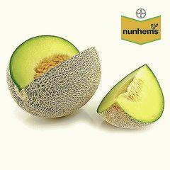 Воллер F1 семена дыни (Nunhems / Нюнемс)