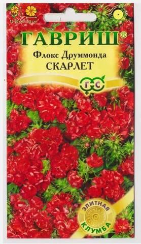 Семена Флокс Скарлет махровый, одн