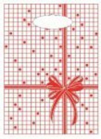 Пакет с вырубной неусиленной ручкой 22x30 (12) Мини одностор. Красная клетка