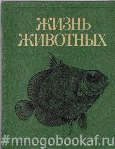 Жизнь животных. Том четвертый. Ланцетники. Круглоротые. Хрящевые рыбы. Костные рыбы