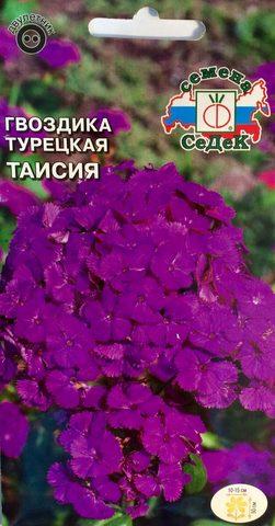 Семена Гвоздика турецкая Таисия, Дв