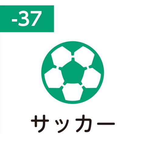 Pilot FriXion Stamp SPF-12-37G (サッカー / sakkā / футбол)