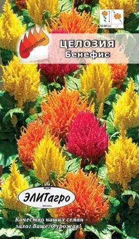 Семена Целозия Бенефис перистая, Одн