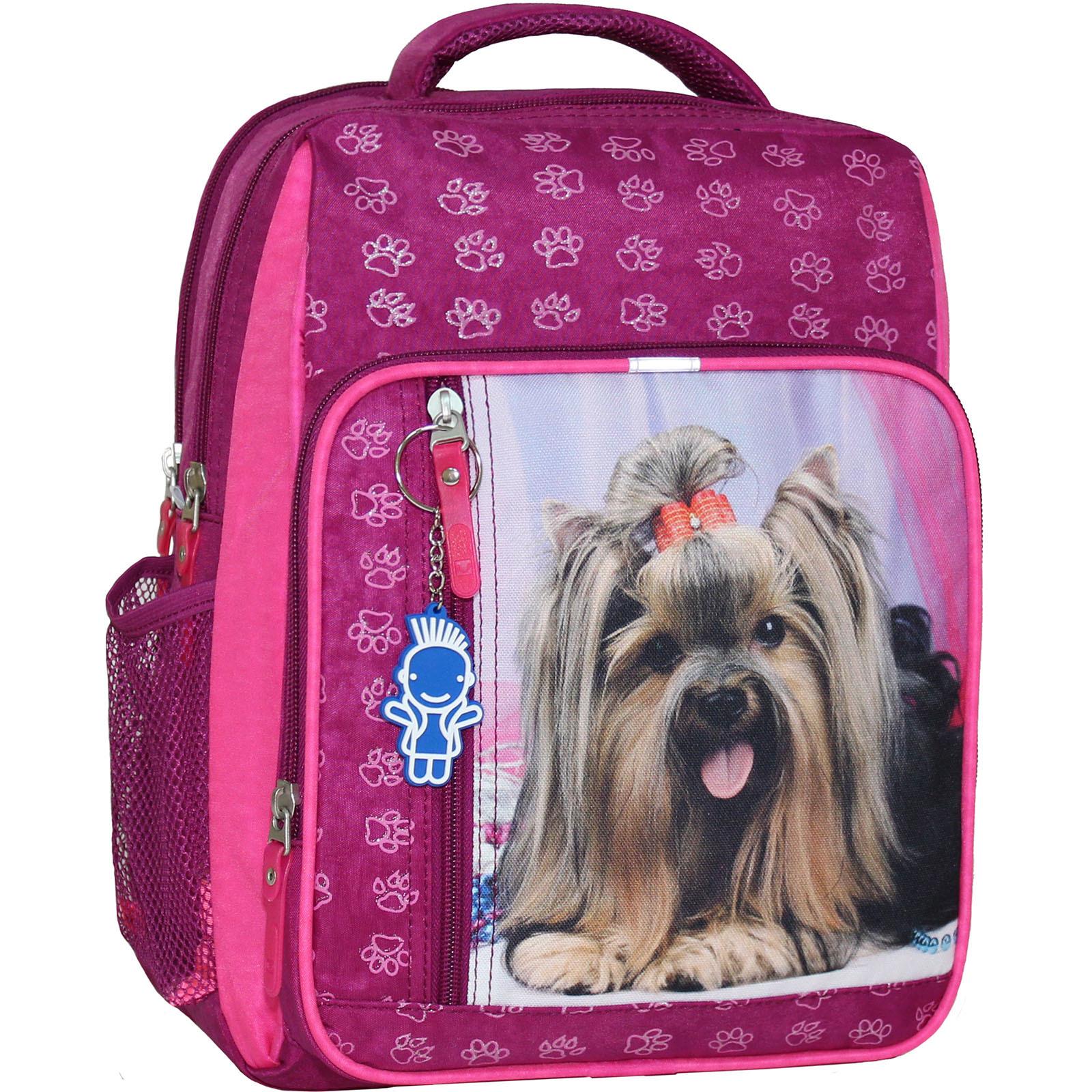 Школьные рюкзаки Рюкзак школьный Bagland Школьник 8 л. 143 малиновый 18д (0012870) IMG_4481.JPG