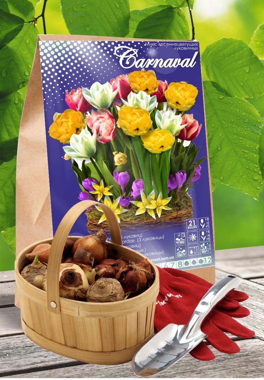 Смесь  Весеннецветущих Луковичных