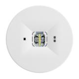 Аварийные светодиодные светильники для высоких потолков ONTEC C F1 TM Technologie