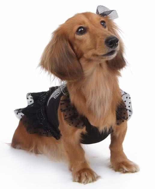 купить вечернее платье для собак в москве