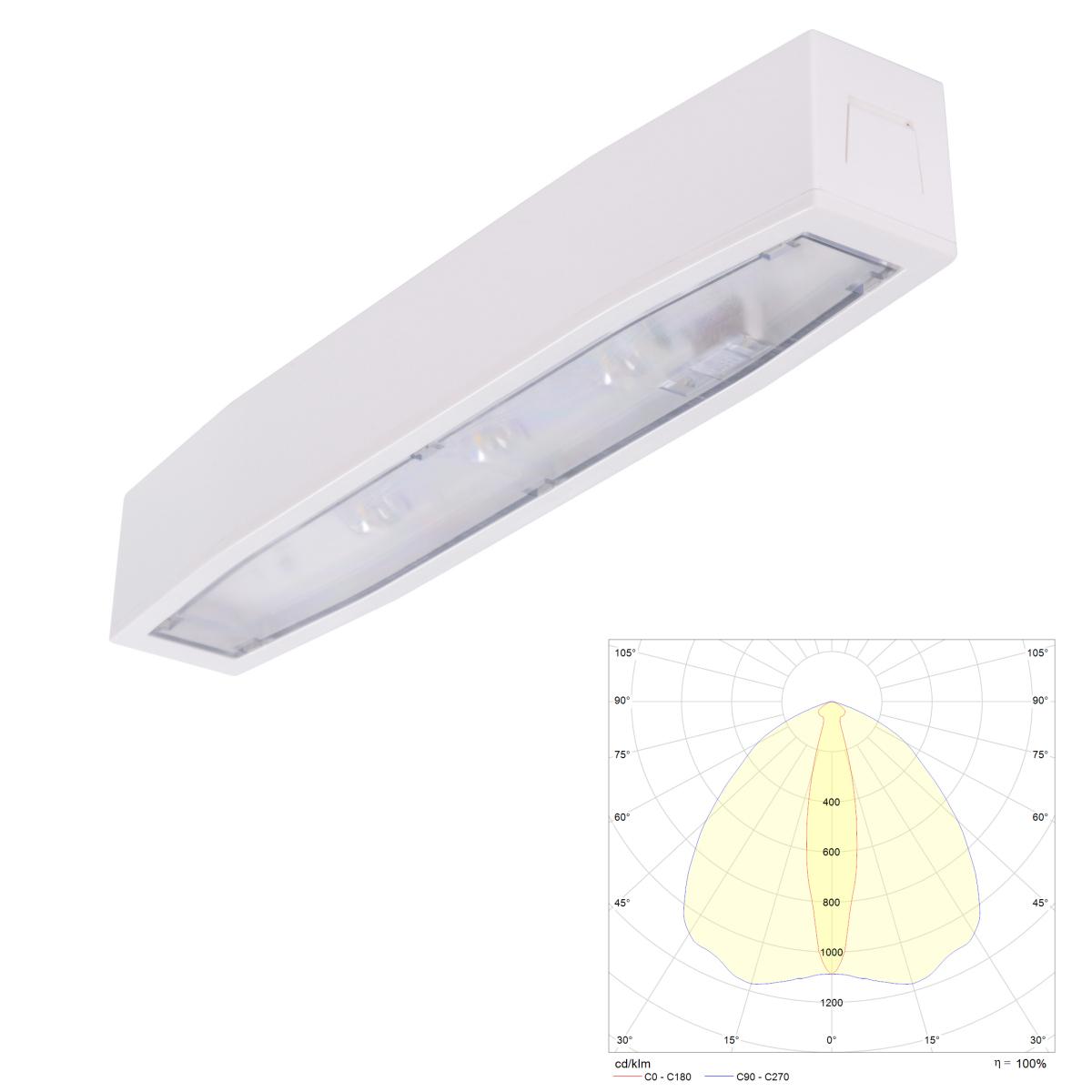 Аварийный светильник для эвакуационных проходов в торговых залах с высокими потолками Suprema LED SСH NT IP54 Intelight – внешний вид