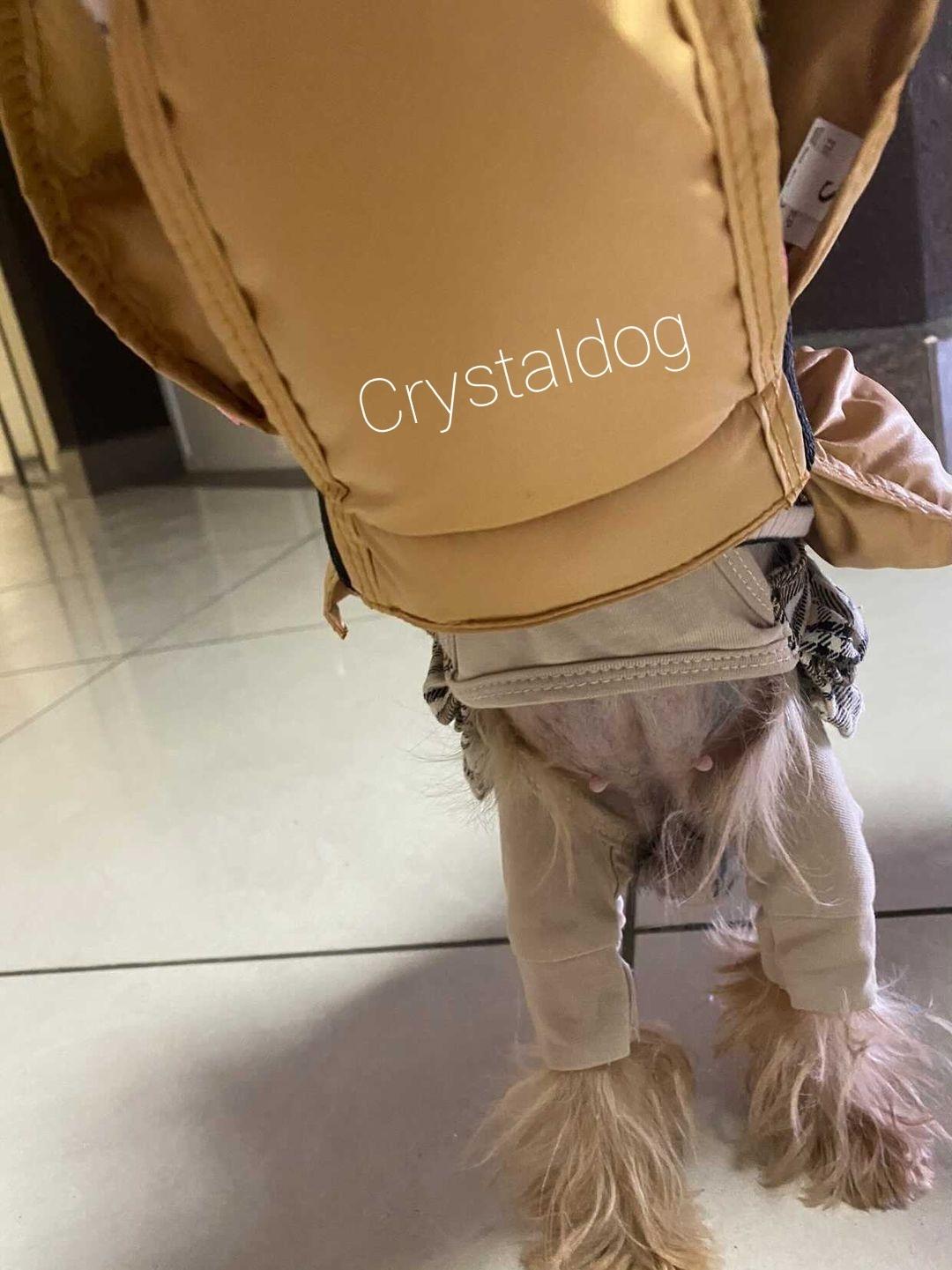 005-21 LM - Куртка-накидка для собак