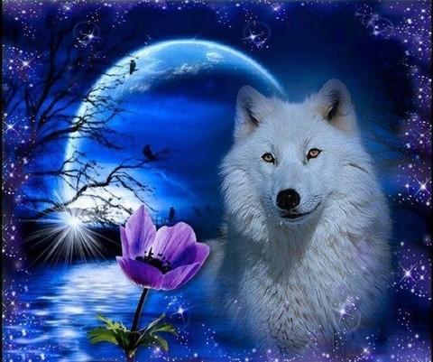 Алмазная Мозаика 20x30 Белый волк в ночи (арт. MTC3192)