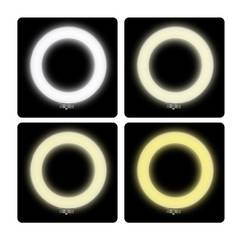 Кольцевая светодиодная лампа 32 см Ring Supplementary Lamp Pro со штативом и пультом для профессиональной съемки