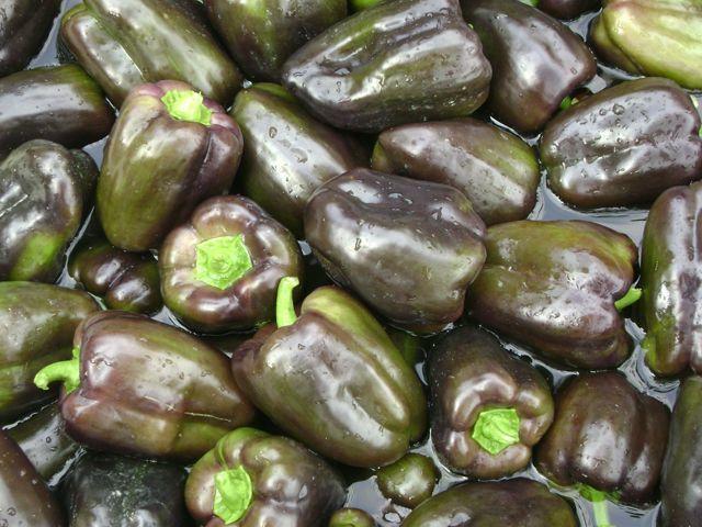Перец Маврас F1 семена перца сладкого (Enza Zaden / Энза Заден) Маврас_F1_семена_овощей_оптом.jpeg