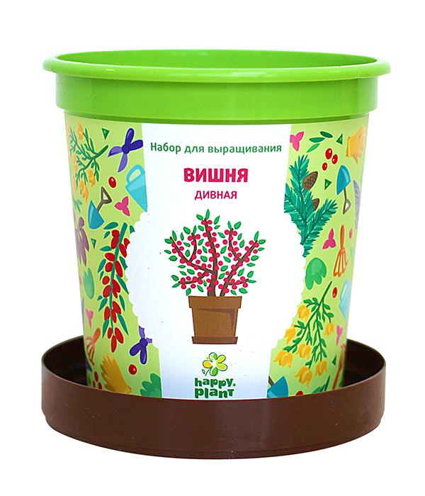 Набор для выращивания в горшочках Happy Plant Вишня дивная