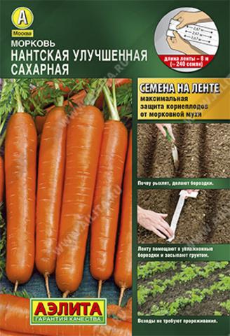 Морковь Нантская улучшенная сахарная тип л
